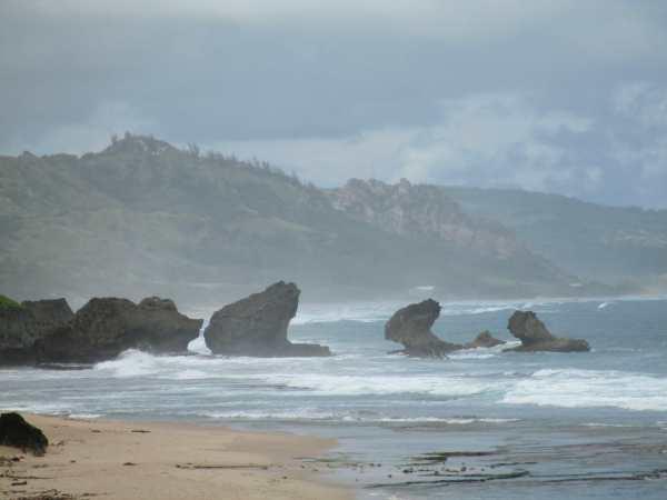 Surf Barbados